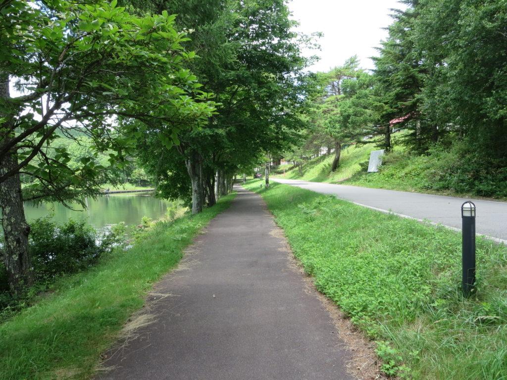 女神湖周辺の遊歩道ハイキング