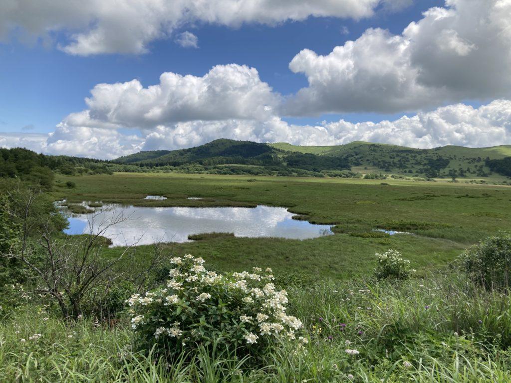 八島湿原ハイキング