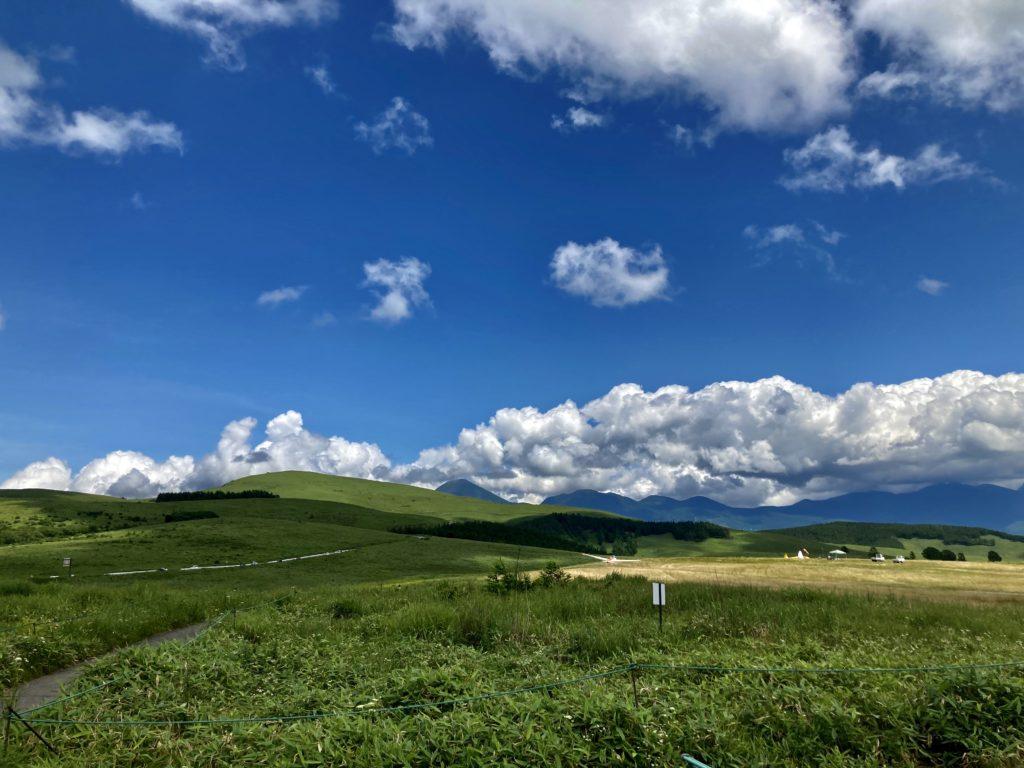 霧ヶ峰スキー場 山頂付近 夏