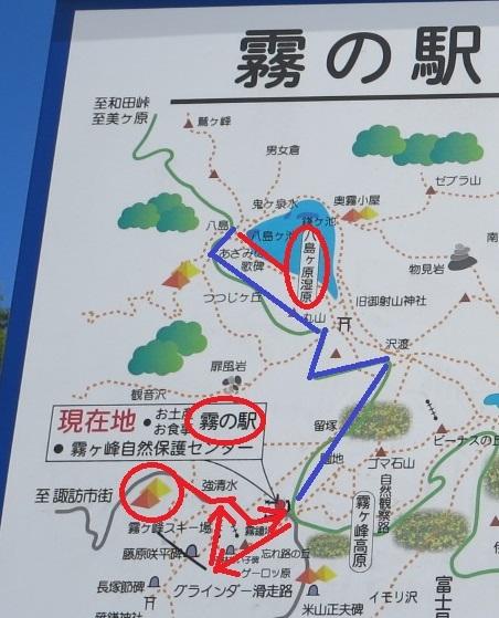 霧ヶ峰キャンプ場から八島湿原へのハイキング ルート