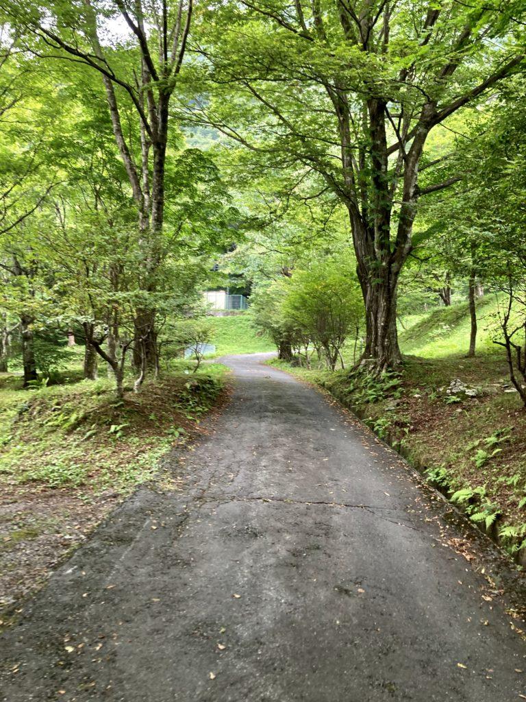 わらび平森林公園キャンプ場を軽キャンピングトレーラーの幌馬車くんでキャンプの運動広場までの道