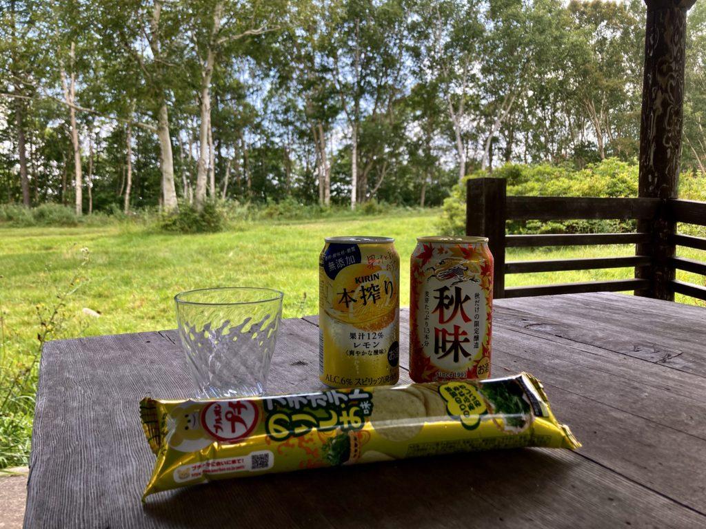 武尊牧場キャンプ場に幌馬車くんの軽キャンピングトレーラーで行く車中泊のキャンプ 東屋で乾杯