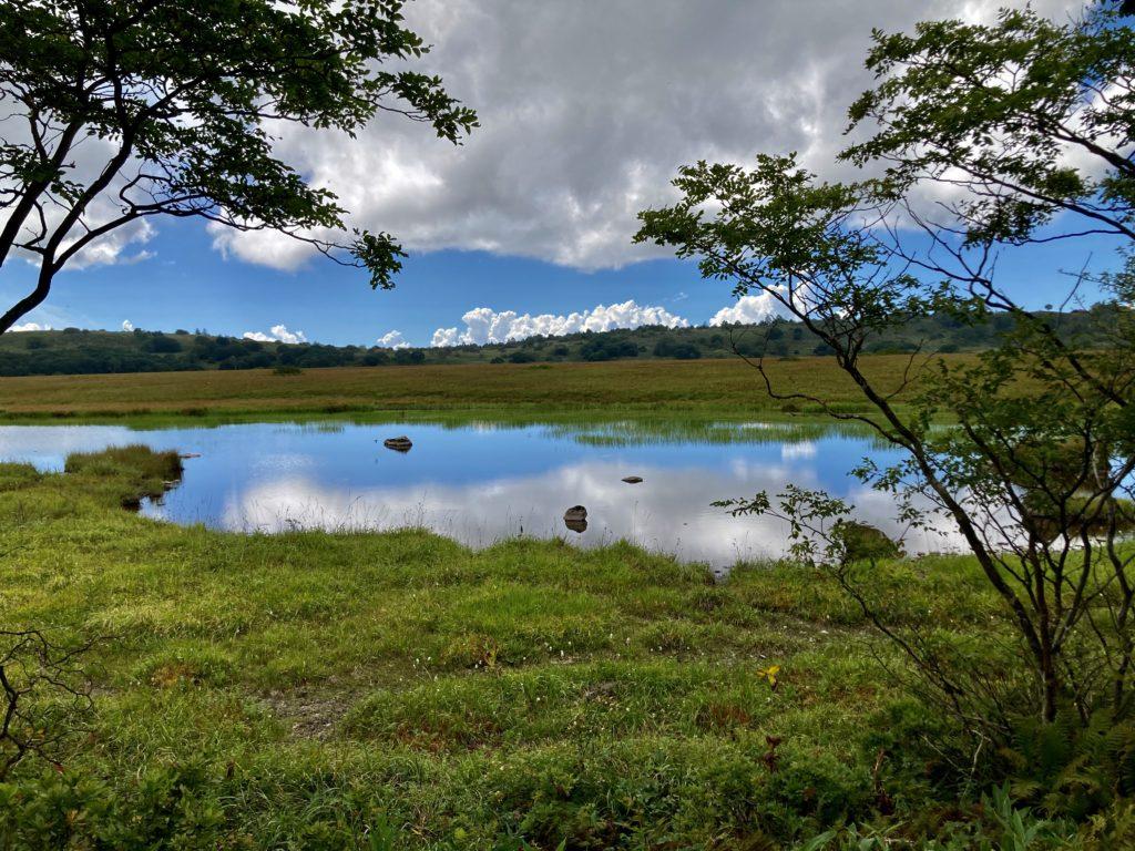 幌馬車くんと行く霧ヶ峰スキー場の車中泊で八島湿原の池風景その2