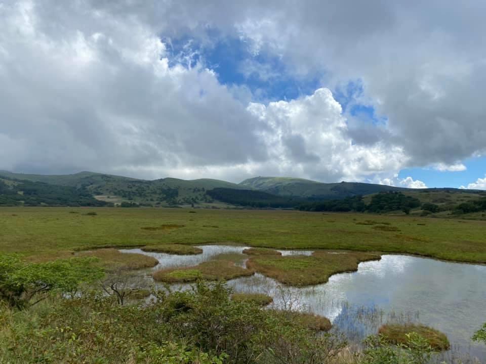 幌馬車くんと行く霧ヶ峰スキー場の車中泊八島湿原の池