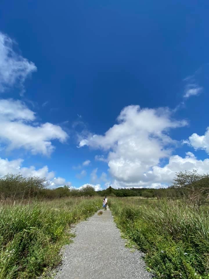 八島湿原のちょうど反対側の道