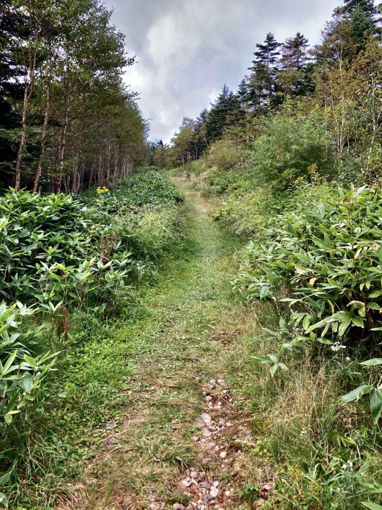 パルコール嬬恋ゴンドラ山頂からの四阿山登山ルート スキー施設内