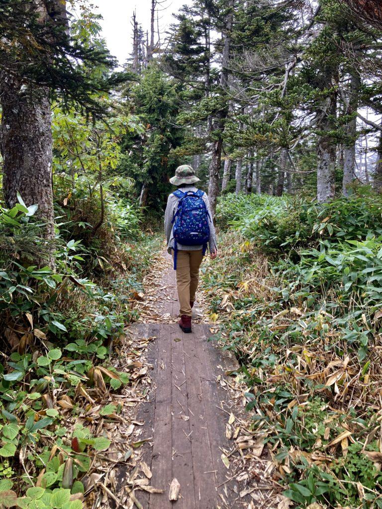 パルコール嬬恋ゴンドラ山頂からの四阿山登山ルートにある木道
