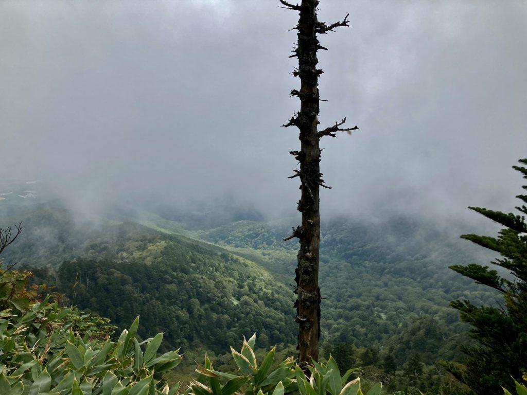 パルコール嬬恋ゴンドラ山頂からの四阿山登山ルートから見える尾根からの風景
