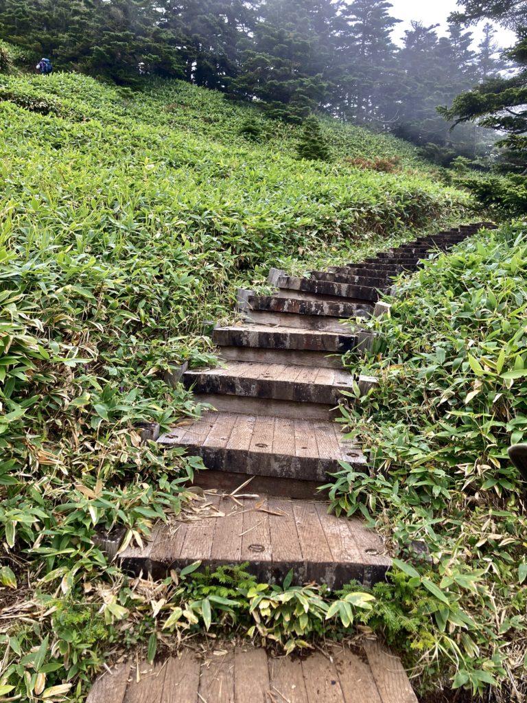 パルコール嬬恋ゴンドラ山頂からの四阿山登山ルートにある木道の階段