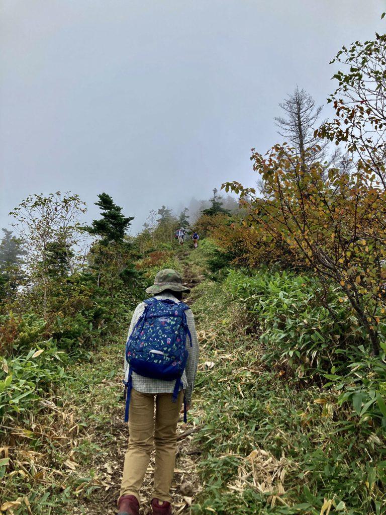 パルコール嬬恋ゴンドラ山頂からの四阿山登山ルートの最後の登り