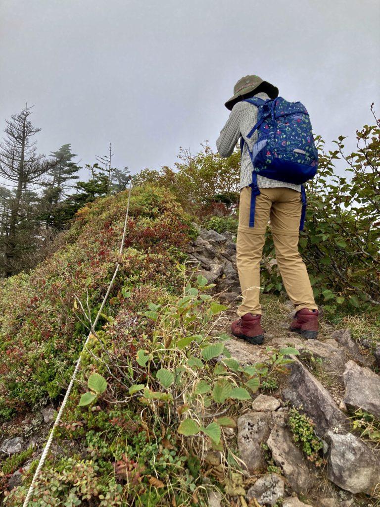 パルコール嬬恋ゴンドラ山頂からの四阿山登山ルートの最後の山頂の登り