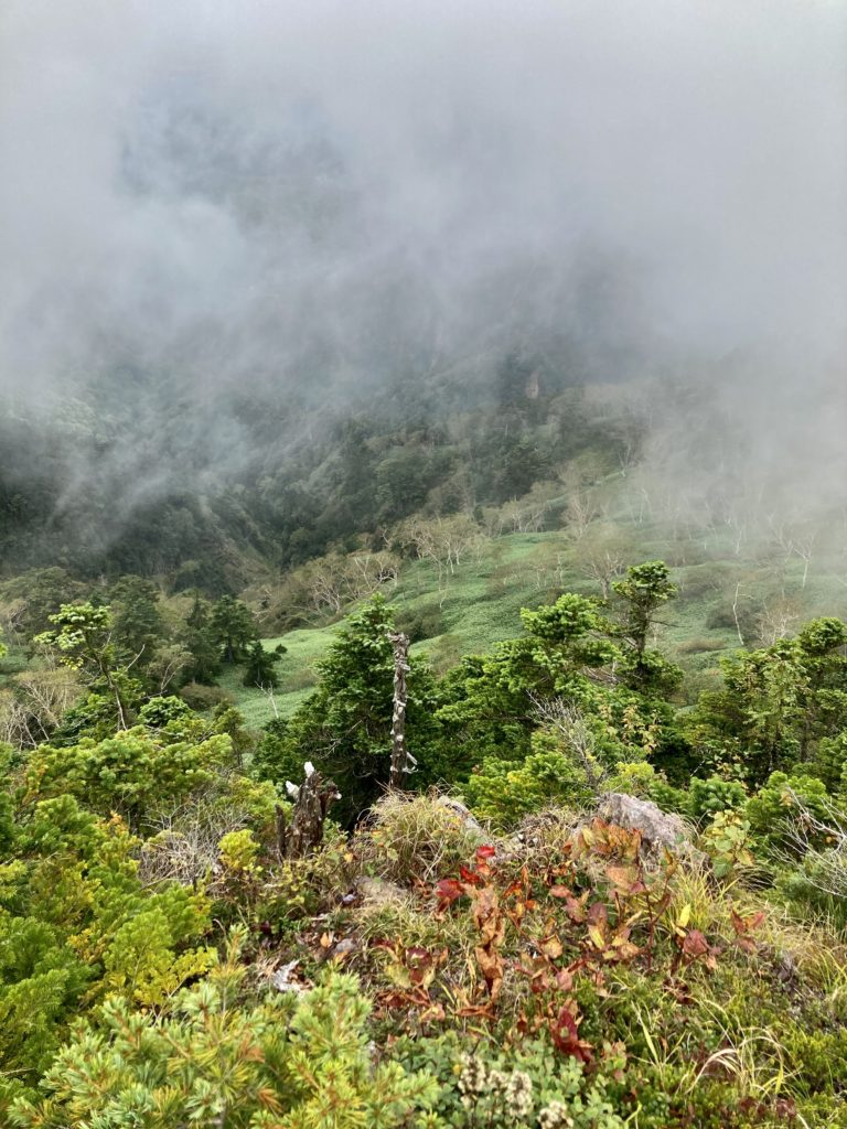 パルコール嬬恋ゴンドラ山頂からの四阿山登山ルートからの尾根の風景