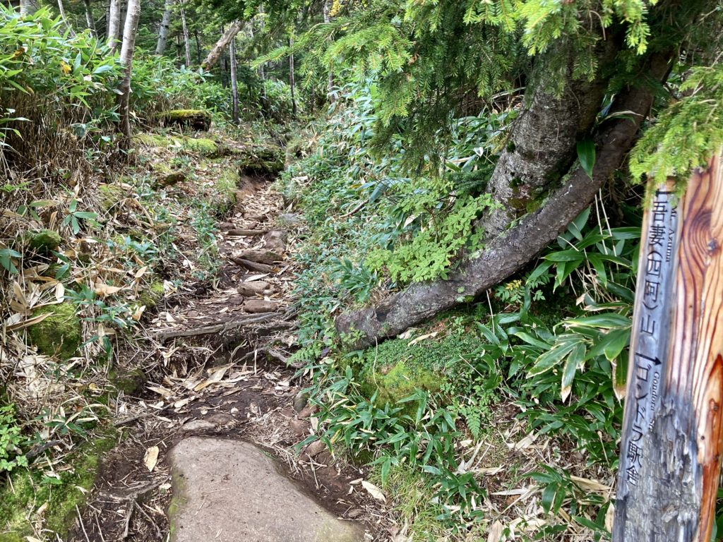 パルコール嬬恋ゴンドラ山頂からの四阿山登山ルート 登山口の案内