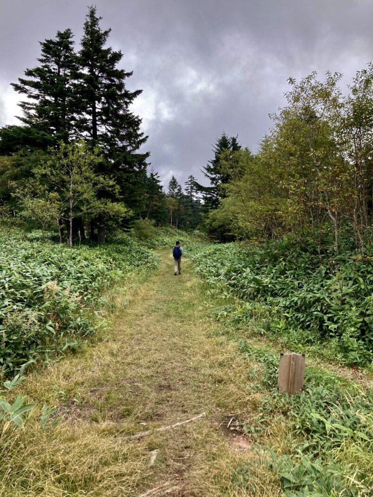 パルコール嬬恋ゴンドラ山頂からの四阿山登山ルートの帰りの道