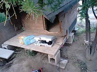 犬小屋の再補修