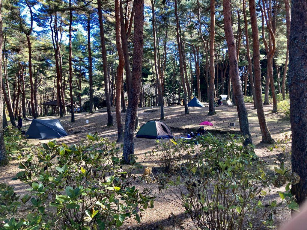 渋川市総合公園キャンプ場のテントサイト