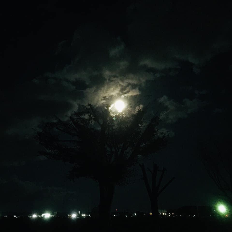 矢板 城の湯キャンプ場の夜
