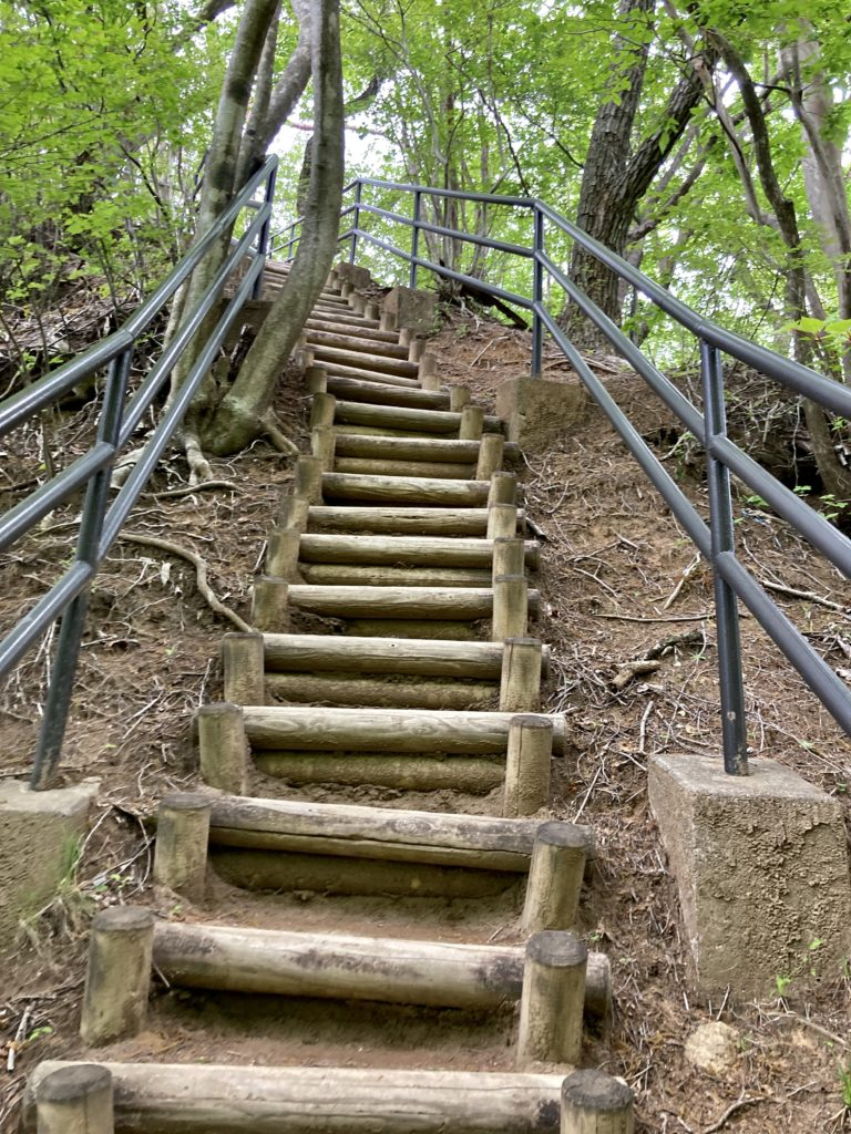 道の駅「あがつま峡」から八ッ場(やんば)ダムへの八丁暗がりトレッキングで小蓬莱への階段