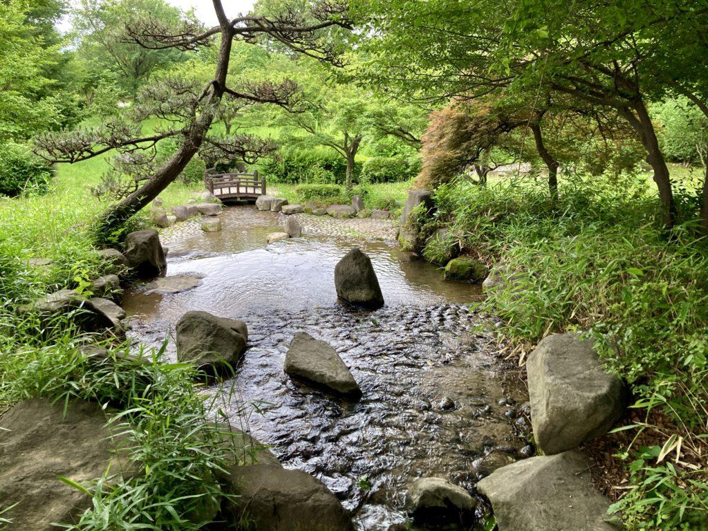 道の駅「よしおか温泉」の近くの天神東公園の蛍池
