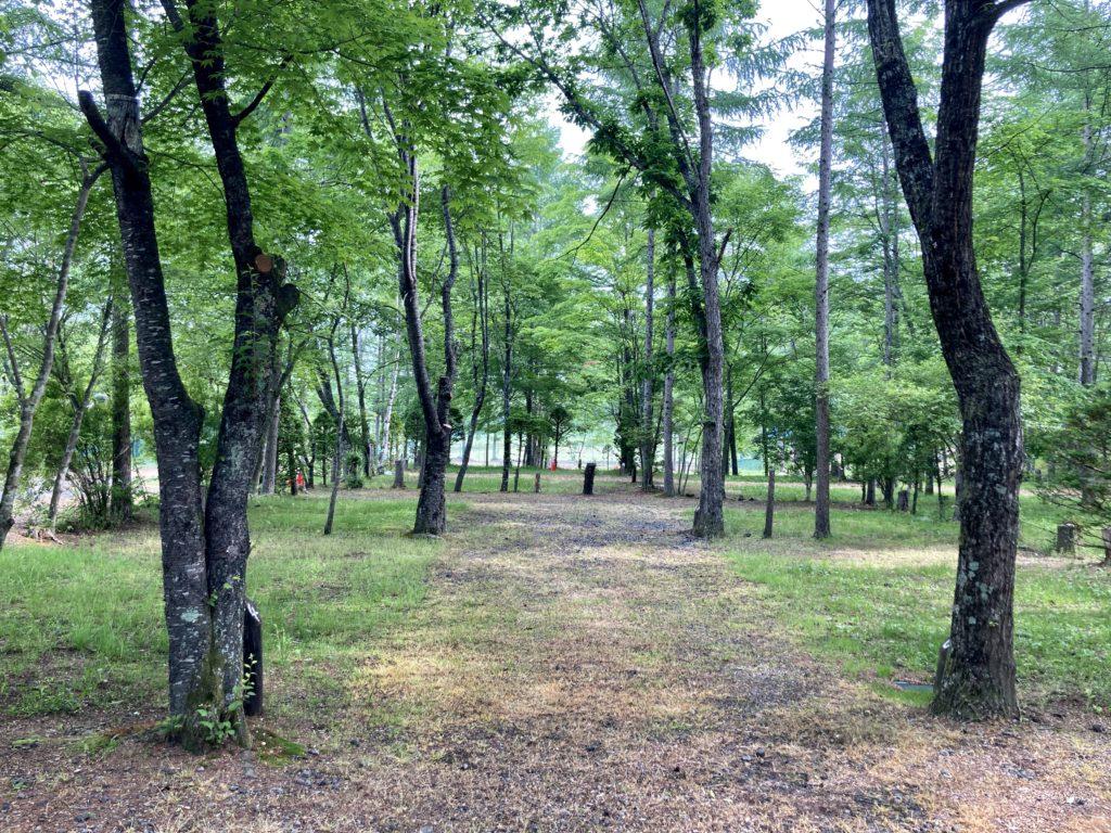 北軽井沢オートキャンプ場「きたかる」の芝サイトの区画