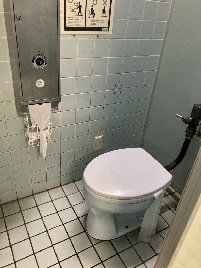 湯の湖 湯元本通り北駐車場のトイレの便座
