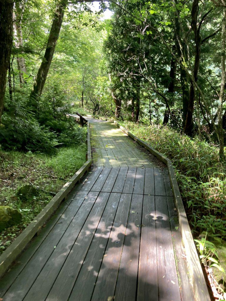 湯の湖と湯滝のハイキングコースの木道