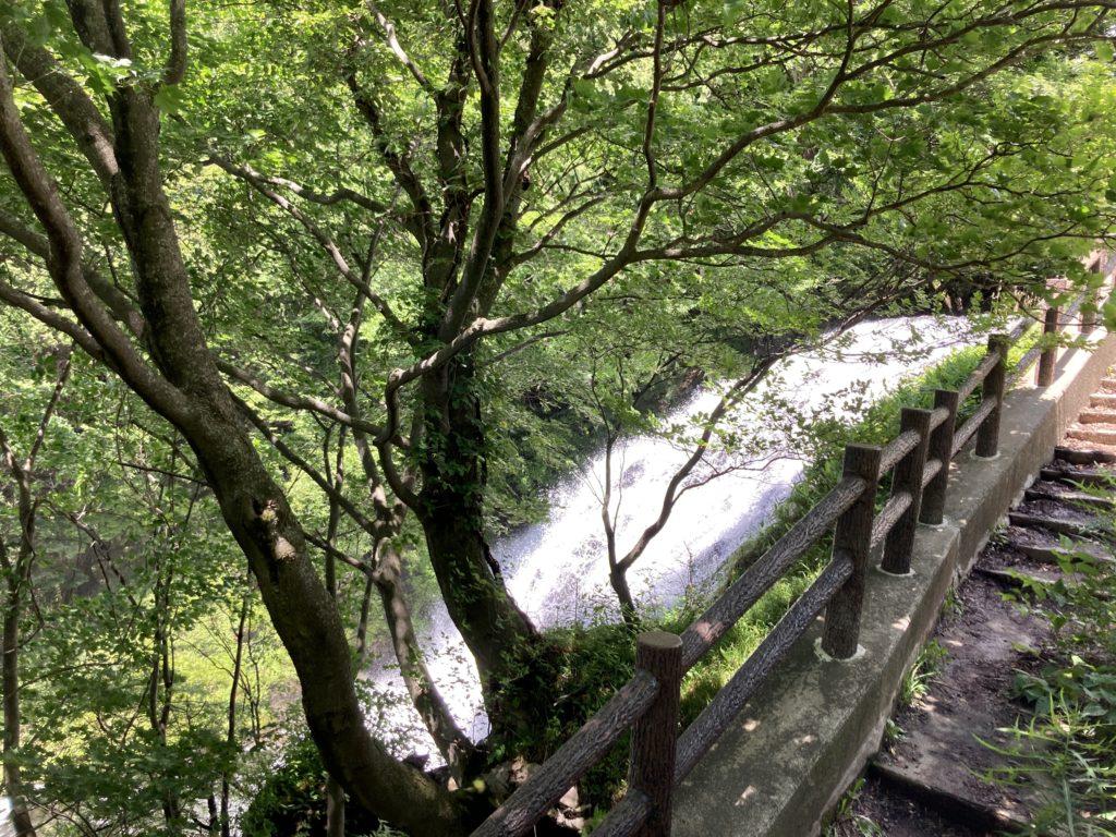 湯の湖と湯滝のハイキングコースで湯滝に到着