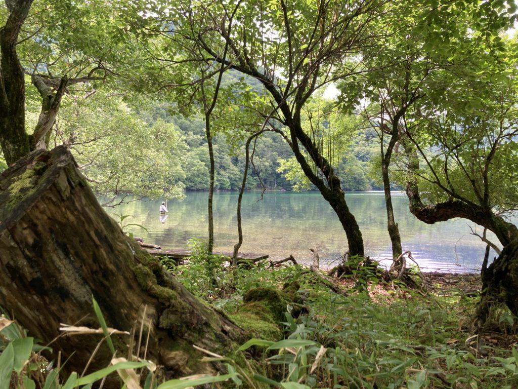 湯の湖の周遊ハイキングコース