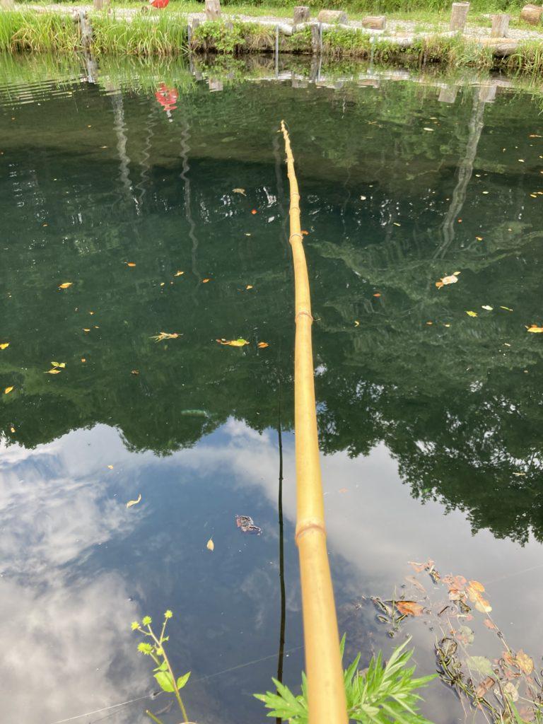 バラキ湖でエサ釣りのレンタルで釣り