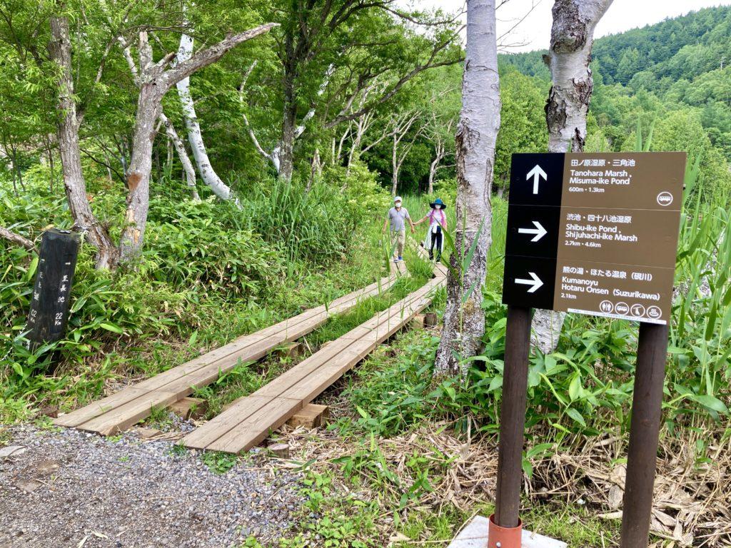 志賀高原自然歩道のハイキングコースの木戸池の木道