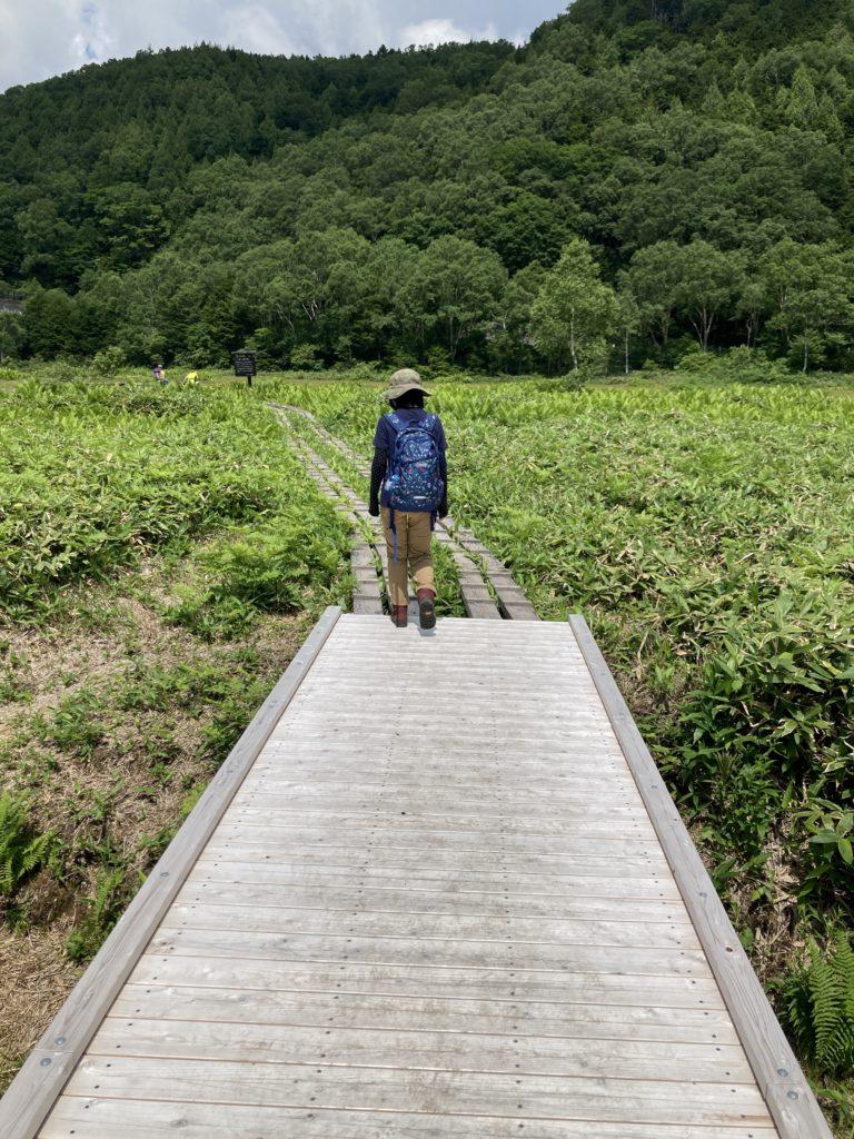 志賀高原自然歩道のハイキングコースの田ノ原湿原を歩く