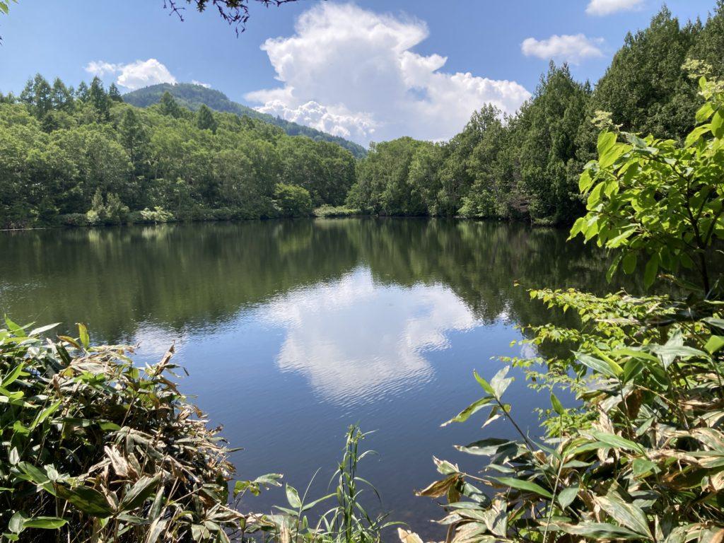 志賀高原自然歩道のハイキングコースで三角池