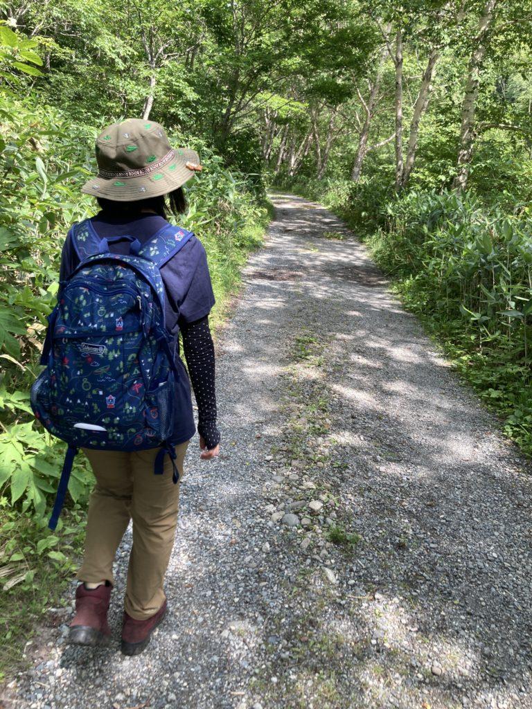 志賀高原自然歩道のハイキングコースで長池付近の林道