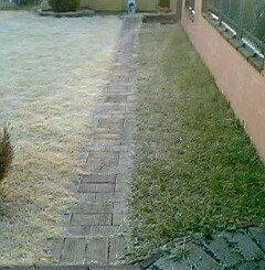 つくばグリーンの冬
