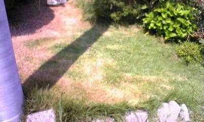 芝生つくばグリーン