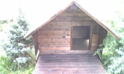 犬小屋の組み立て