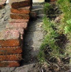石レンガの芝生除去