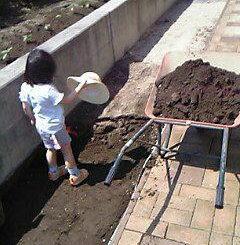 一輪車で土の除去