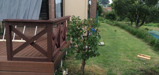 どんぐりの木とウッドデッキ自作
